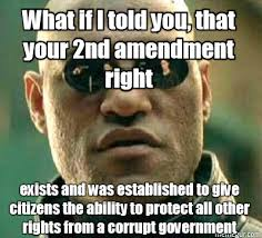 Right To Bear Arms Meme - its terrifying how many americans do not seem to remember why we