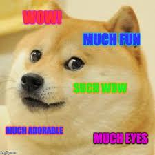 Funny Doge Memes - doge meme imgflip