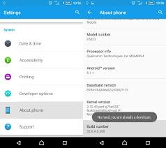 android developer options how to enable developer options in android
