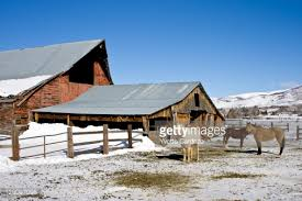 barn farm country at thanksgiving point stock photo getty images