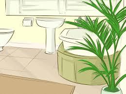 3 ways choose houseplants for bathroom wikihow
