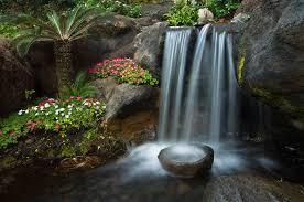 zen gardens gardenso