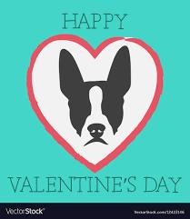 Boston Terrier Flag Valentines Day Boston Happy Valentines Day Boston Terrier Vector