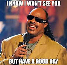 Have A Good Day Meme - i know i won t see you but have a good day meme stevie wonder