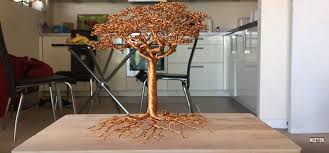 a detailed wire tree time lapse ntd inspired
