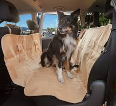 cheap dog seat belts for cars find dog seat belts for cars deals