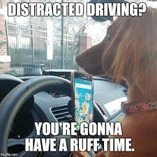 Driving Meme - 2017 video meme contest results
