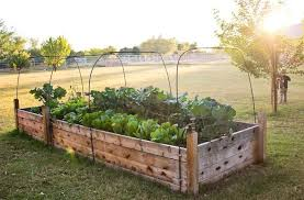 elevated garden box plans interior design ideas