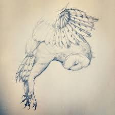 best 25 owl tattoo drawings ideas on pinterest owl sketch owl