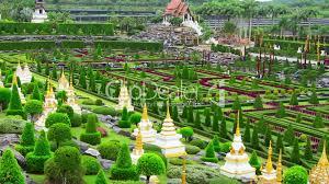 Nong Nooch Tropical Botanical Garden by Tropical Garden Nong Nooch In Thailand Royalty Free Video And