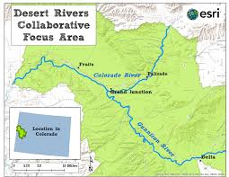 Map Of Colorado River by Desert Rivers Collaborative Tamarisk Coalition