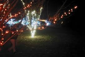 outdoor mushroom lights brookside gardens kidfriendly dc