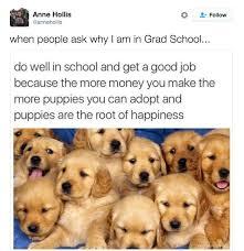 resume templates janitorial supervisor meme doge wallpaper meme 381 best grad images on pinterest funny stuff jokes and