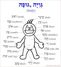 Hebrew Worksheets Biblical Hebrew Tools אמונה בישוע