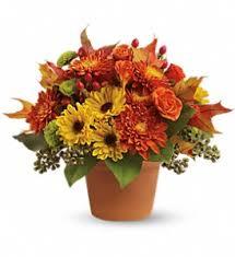 orange park florist fall flowers delivery chicago il hyde park florist