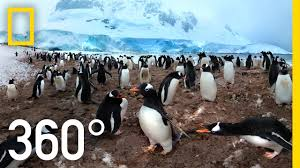 360 antarctica unexpected snow national geographic youtube