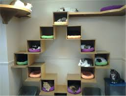 Cat Furniture by Interesting Cat Trees