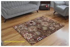 The Home Depot Area Rugs Area Rugs Lovely Home Depot Area Rugs 4x6 Home Depot Area Rugs