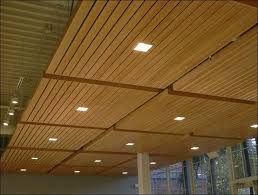 Drop Ceiling Styles by Best 25 Drop Down Ceiling Ideas On Pinterest French Designers