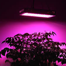 best grow lights on the market 18 best best led grow lights on market images on pinterest