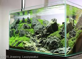 nano aquascape nano aquascape aquajaya