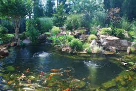 garden design garden design with landscaping ponds landscape pond