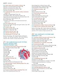 Human Anatomy And Physiology Review Human Anatomy And Physiology Muscles Considerable Online Anatomy