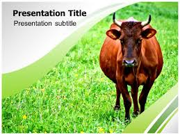 image result for free ppt template for dairy presentation dairy