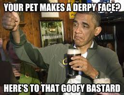 Goofy Face Meme - your pet makes a derpy face here s to that goofy bastard