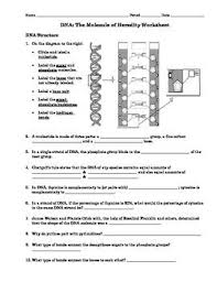 Dna Structure And Replication Worksheet Key 33 Best Teachers Pays Teachers Images On Pay