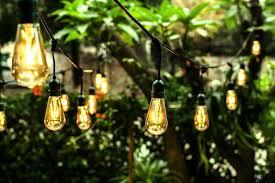edison light string ove decors all season led string light with 24 oversized edison
