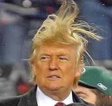 donald trump hair blank template imgflip