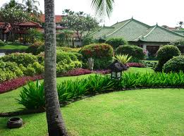 awesome designing a tropical garden 13 astonishing tropical