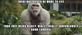 Gorilla Meme - rage gorilla meme on imgur