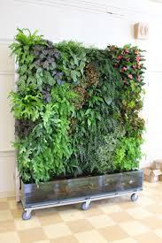 here is an idea for a vertical garden plus a fish tank garden