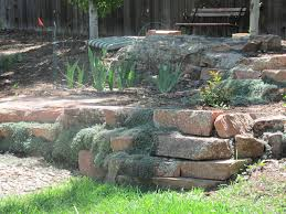 Garden Rock Wall by Woolly Thyme After 1 Year In Moss Rock Wall U2013 Glacier View