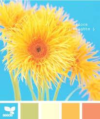 194 images palette color pallets living