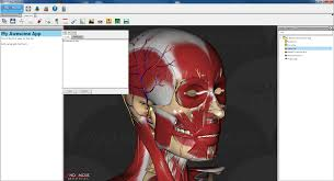 3d Medical Software Anomalous Medical Launches Blog