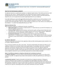 resume objectives for it professionals finance resume objective