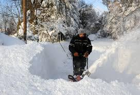 Photos Of Snow Buffalo Buried By Wall Of Snow Photos Image 1 Abc News