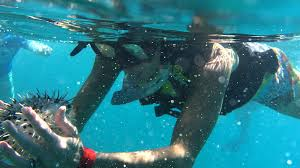 California snorkeling images The sea of cortez offers unforgettable snorkeling all mexico 365 jpg