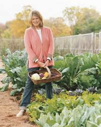 martha u0027s vegetable garden tips martha stewart