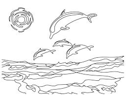 dolphin u2013 alcatix com