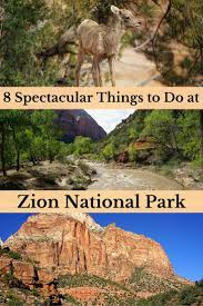 best 25 zion national park hotels ideas on pinterest hotels