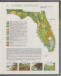 Florida vegetaion images Natural vegetation david rumsey historical map collection jpg