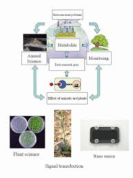 b u0026be biotechonology u0026 biotechnological equipment bulgarian