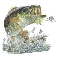 fly fishing home decor largemouth bass fishing painting rainbow trout fishing