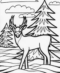 deer coloring pages download and print for free 14958
