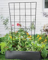 vegetable trellis peas cucumbers squash gardener u0027s supply