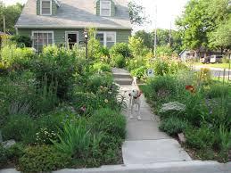 a corner garden east front yard flower bed